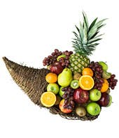 Fruitful Cornucopia
