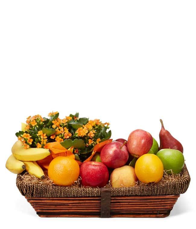 Kalanchoe Plant and Fruit Basket