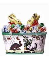 Bunny Abundance