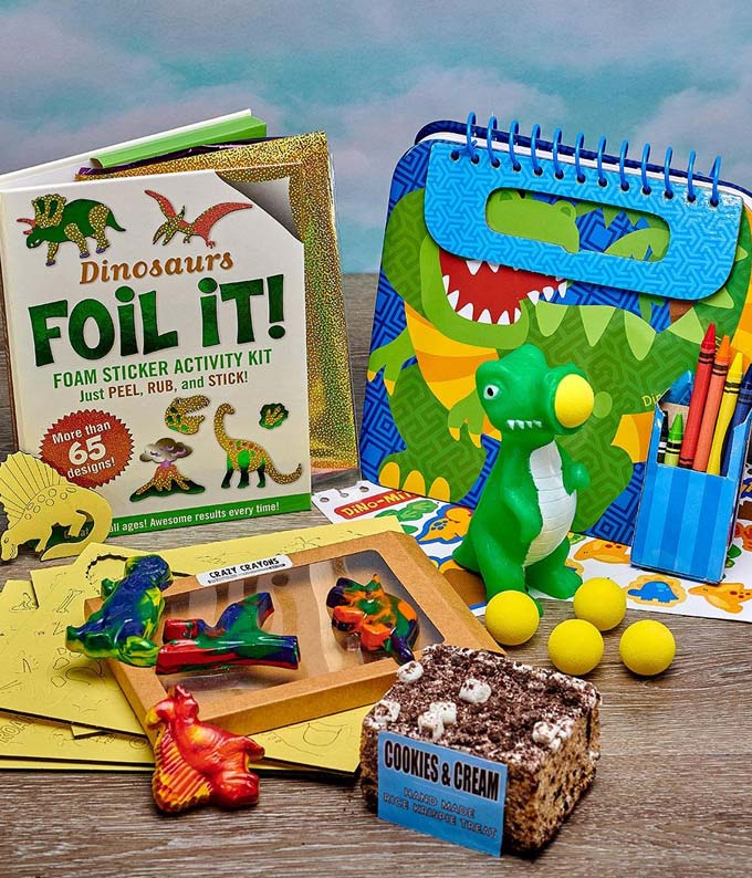 Dinosaur Discovery Kids Gift