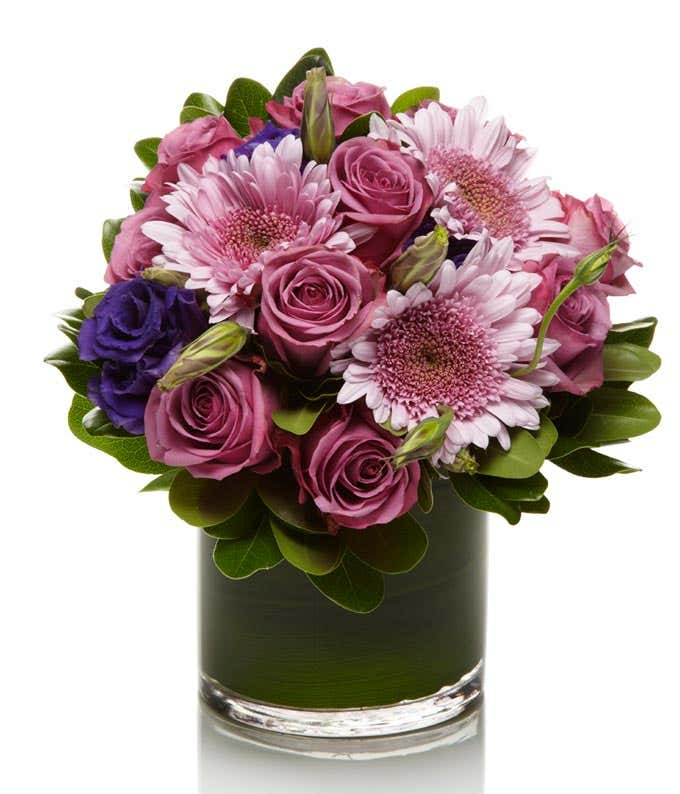 Purple roses delivered in a circular vase with purple mums