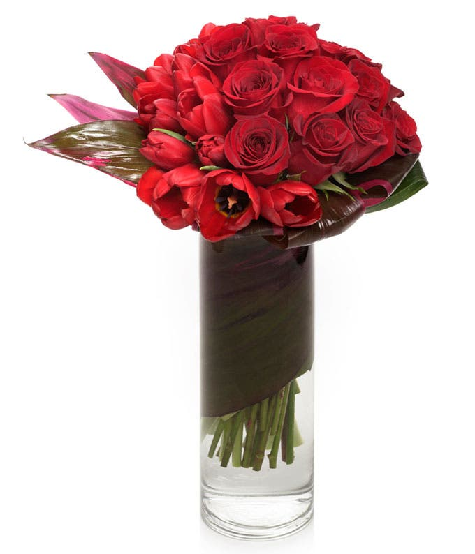 Soaring Luxury with Red Roses