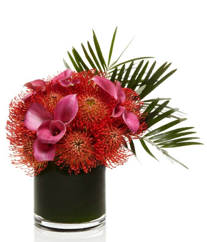 Red Pincushion Protea with Pink Lilies delivered