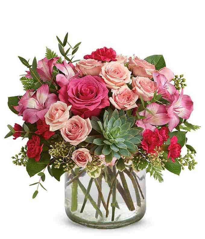 Pink Rose Succulent Garden
