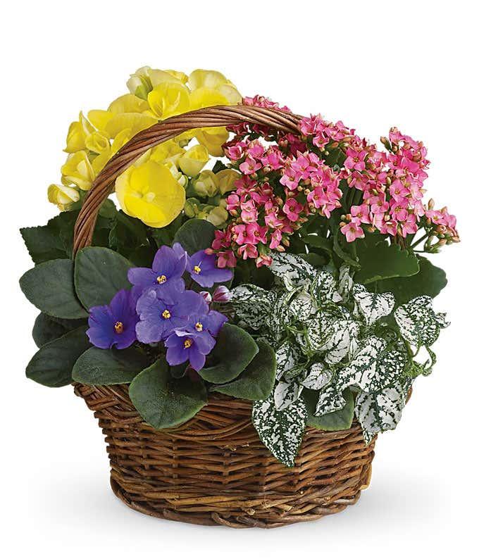 Summer Floral Basket
