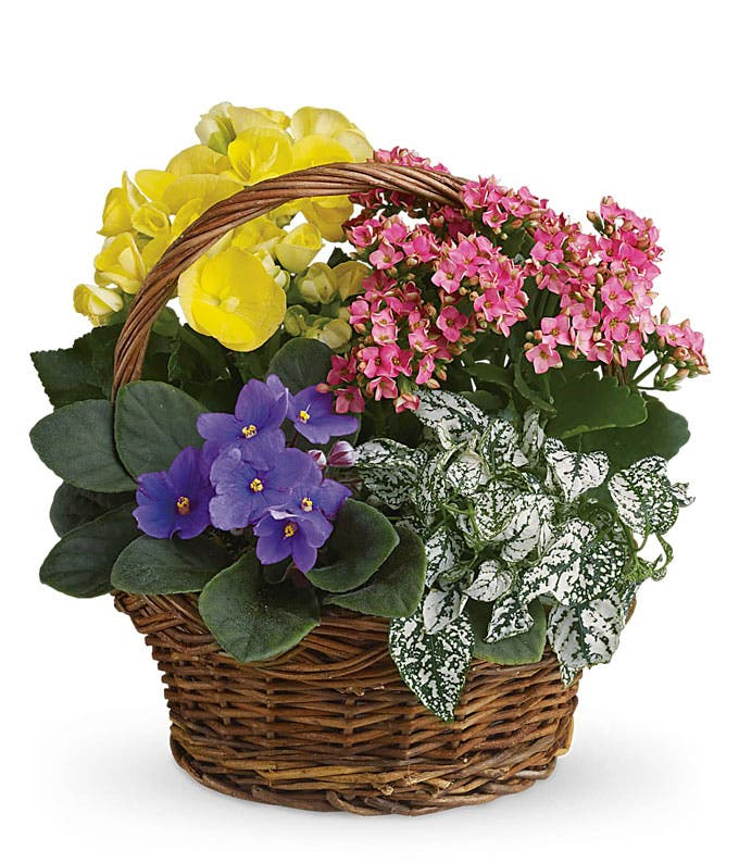 Summer Floral Basket