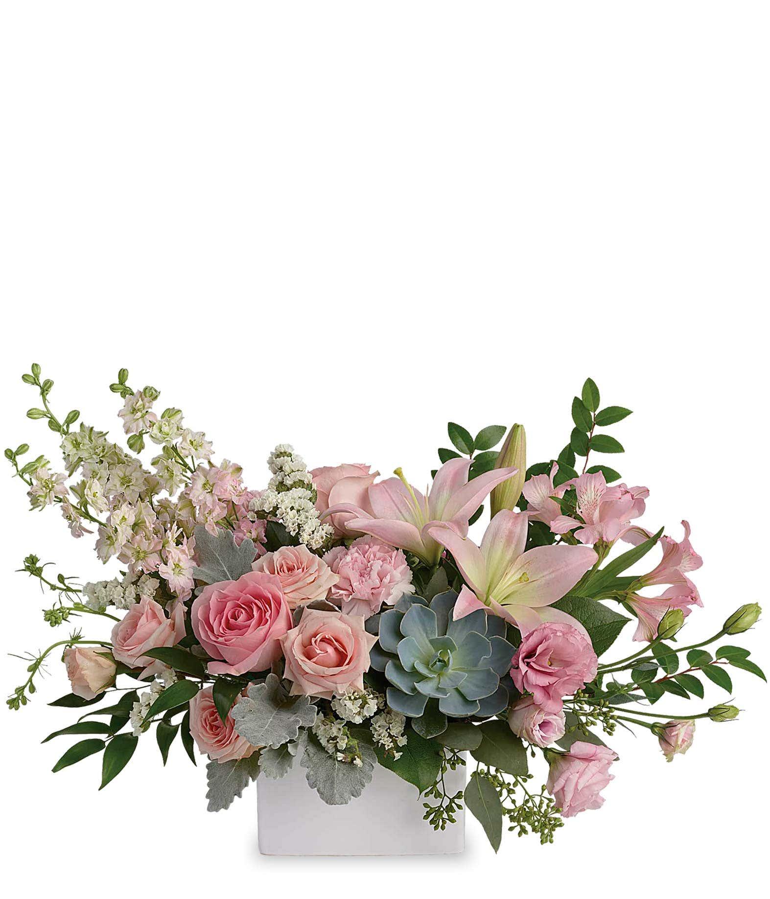 Luxury succulent arrangement