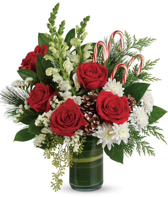Red roses, white snapdragons and cedar with candy cane bouquet