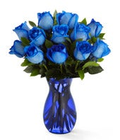 One dozen blue roses delivered in a blue vase