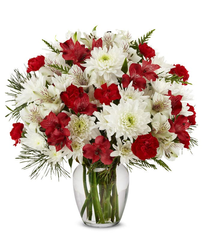 Red and white alstroemeria in a red vase for Christmas