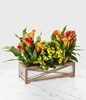 Yellow Kalanchoe plant with orange calla lilies in wooden box