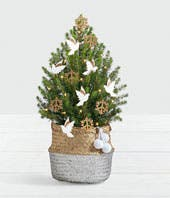 Peace on Earth Christmas Tree