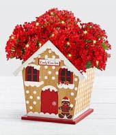 Gingerbread Houseplant
