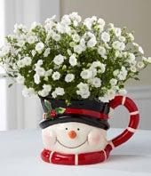 Snowman Surprises...
