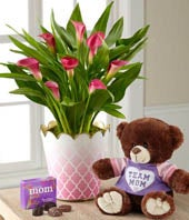 Valentine's Day Calla Lily with OREOS & Plush Bear