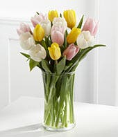 Sunset Tulips with FREE Glass Vase