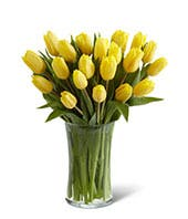 Sunny Tulips with Free Glass Vase