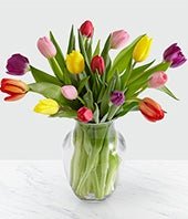 Spring Tulip Bouquet with FREE Vase - 15 Stems