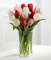 Red, pink and white tulip bouquet