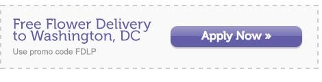 free delivery to Washington, DC