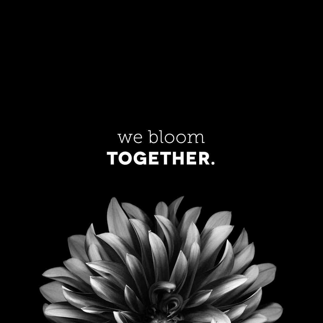 We bloom together.