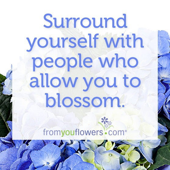 Surround yourself with people who allow you to blossom.